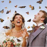 Организация и украшение свадьбы.