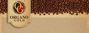 кофе - Organo Gold.