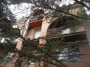 Продам дом Белое-1 (р-н Бородина)