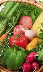 Продам оптом овощи и фрукты