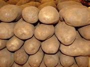 Продам отборный картофель,  с доставкой в Крым,  звони!
