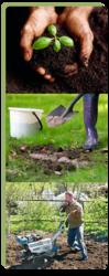 Уникальные органические удобрения Биогран